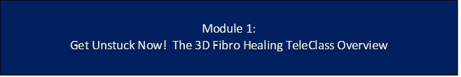 Fibromyalgia healing program Fibromyalgia 3D Fibromyalgia Healing TeleClass Mod 1