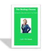 The Healing Cleanse Fibromyalgia 3D Fibromyalgia Healing TeleClass Screen Shot 2016 04 21 at 4