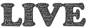 Belly Breathing  Just Breath breathe e1554854641805